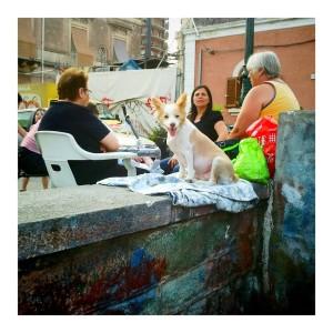 Sicily, June 2012
